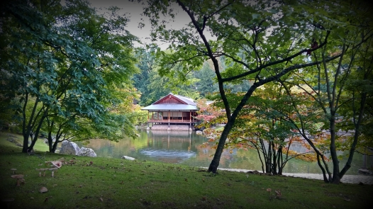 Japanese Garden | Hasselt | Belgium